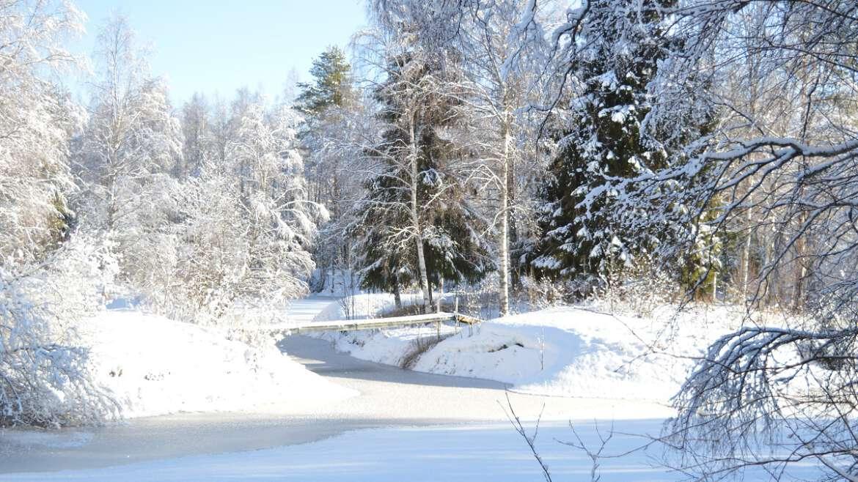 Joulukuun ryhmäenergiahoito Oulussa 18.12.2021